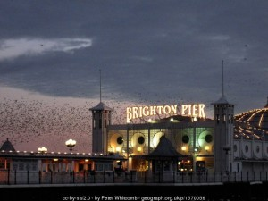 Brighton Pier in winter.